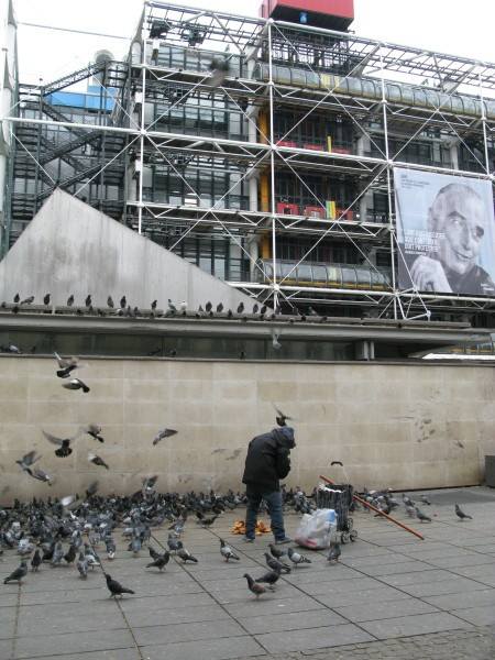 Passant-pigeonne-sur-cent-piges-a-Pompon.jpg