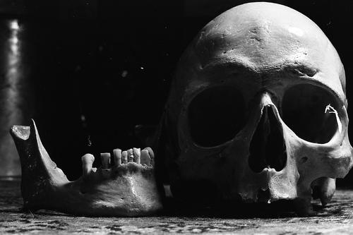 Crâne déjà.